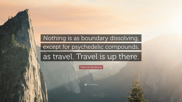 236320-Terence-McKenna-Quote-Nothing-is-as-boundary-dissolving-except-for.jpg