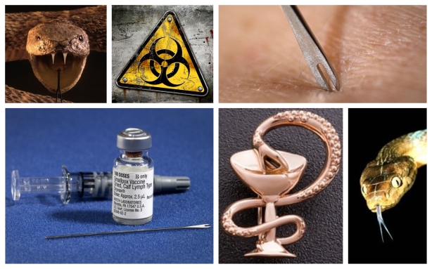 SMALLPOX VACCINE COLLAGE.jpeg.jpeg
